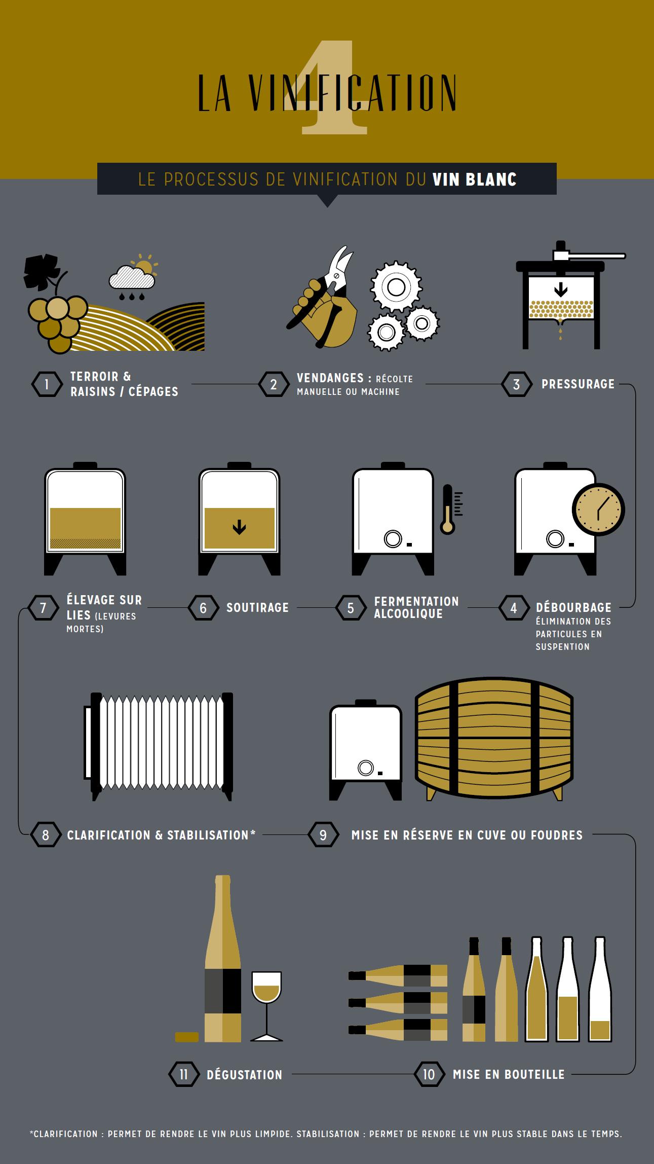 Le processus de vinification des vins blancs | Viticulture ...
