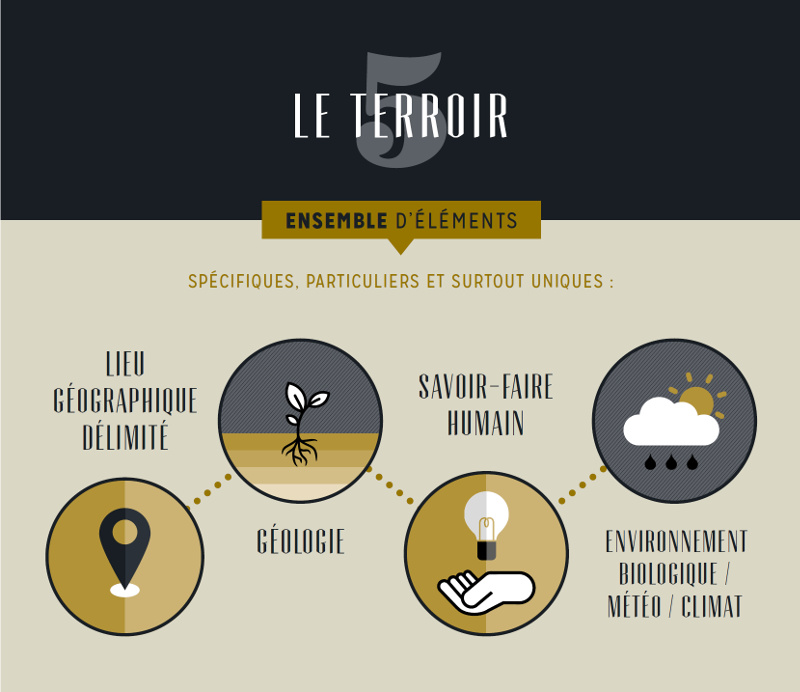 terroir-infographie-wolfberger